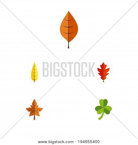 Flat Icon Leaf Set Of Maple, Frond, Alder And Other Vector Objects. Also Includes Leaf, Frond, Leafage Elements.