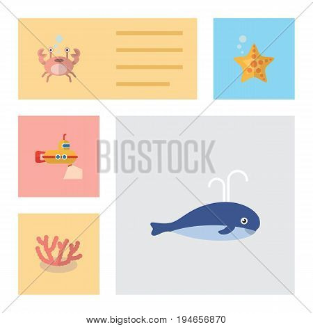 Flat Icon Sea Set Of Cancer, Sea Star, Algae And Other Vector Objects. Also Includes Cachalot, Starfish, Algae Elements.
