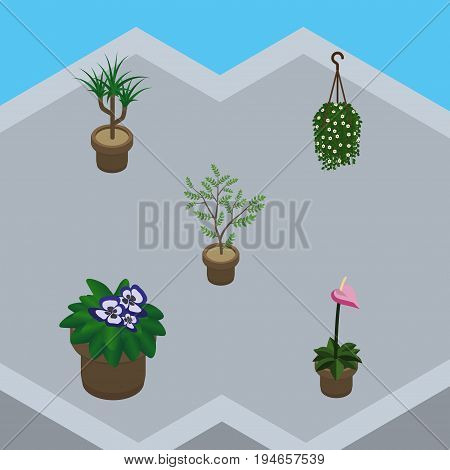 Isometric Plant Set Of Blossom, Fern, Flowerpot And Other Vector Objects. Also Includes Houseplant, Flowerpot, Blossom Elements.