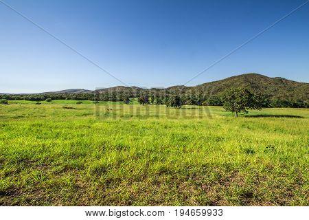 Green Field In Pirenopolis