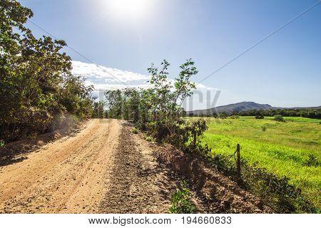 Green Field And Land Street In Pirenopolis