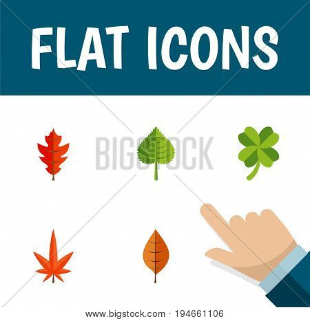 Flat Icon Leaves Set Of Leafage, Aspen, Frond And Other Vector Objects. Also Includes Aspen, Foliage, Alder Elements.