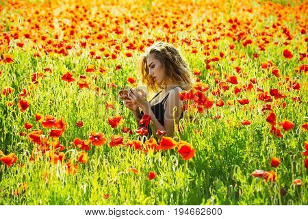 girl in flowers. woman hold mobile phone in field of red poppy seed with green stem on natural background summer spring drug and love intoxication opium new technology
