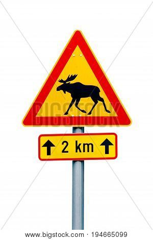 Finnish moose warning road sign on white background. Additional pannel indicates danger for the next 2 km.