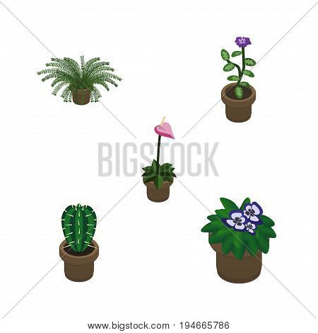 Isometric Flower Set Of Flowerpot, Grower, Flower And Other Vector Objects. Also Includes Fern, Flower, Plant Elements.
