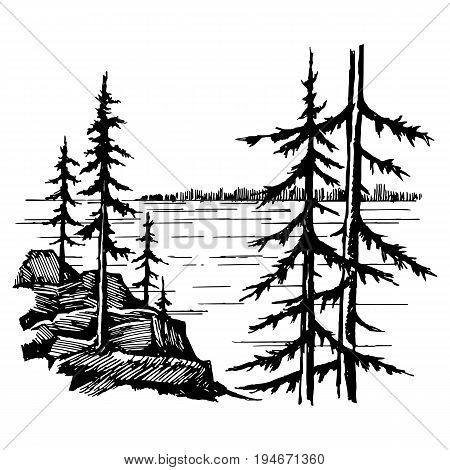 Landscape with lake and spruce forest, sketch of ink-drawn gel pen graphics vector illustration
