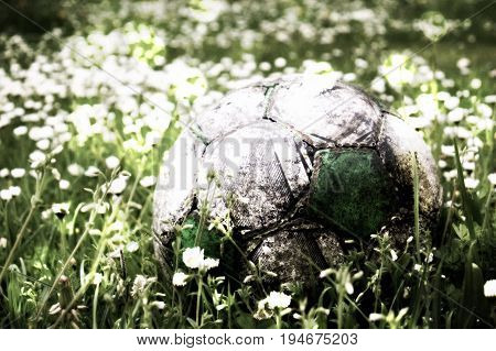 Film Grain. Old Football Ball Hidden In The High Grass Flower And Filed