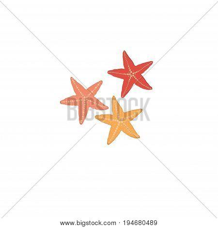 Starfish isolated icon on white background .