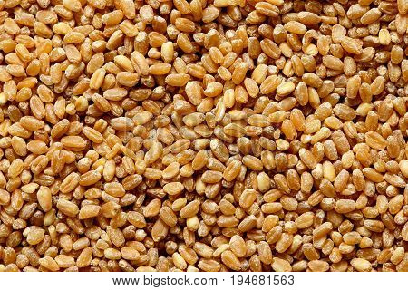 Background of dry spelt groats. Close up.