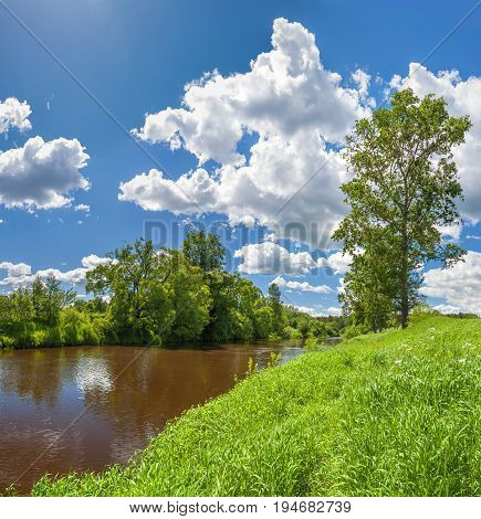 beautiful rural summer landscape with forest river blue sky and white clouds a panorama. spring landscape with lake panoramic view.