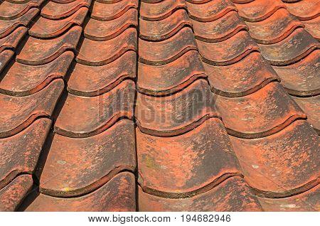 Old Terracotta Tiled Roof, seamless background for design