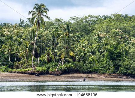 San Lorenzo In The Northern Coast Of Ecuador, Province Of Esmeraldas, 8 Miles From The Colombian Bor