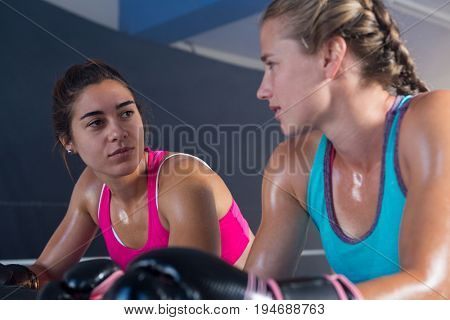 Low angle view of female boxers looking at each other in boxing ring