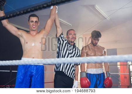 Referee holding hands of smiling male boxing winner by athlete standing in ring