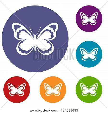 Small butterfly icons set in flat circle reb, blue and green color for web