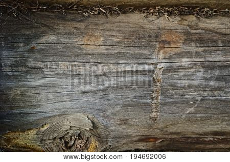 Texture Of The Old Rough Wood