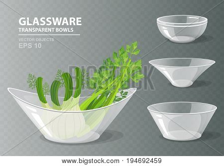 Vector illustration set of four transparent glass bowls with celery and fennel for your design. Kitchen objects on grey checkered background. Cooking collection in realistic style