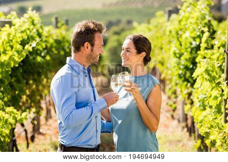 Young couple toasting wineglasses at vineyard on sunny day