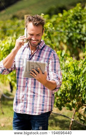 Young man talking on phone while using tablet at vineyard on sunny day