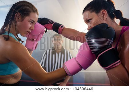 Female boxers punching each other at boxing ring at fitness studio