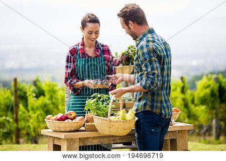 Young woman selling organic vegetables to man at farm