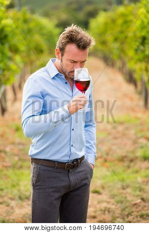 Young man smelling red wine while standing at vineyard