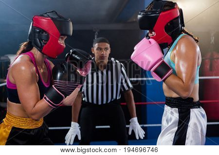 Young male referee looking at female boxers in boxing ring