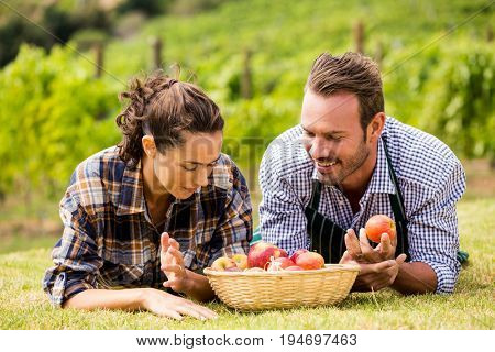 Young couple with apple basket lying down at vineyard