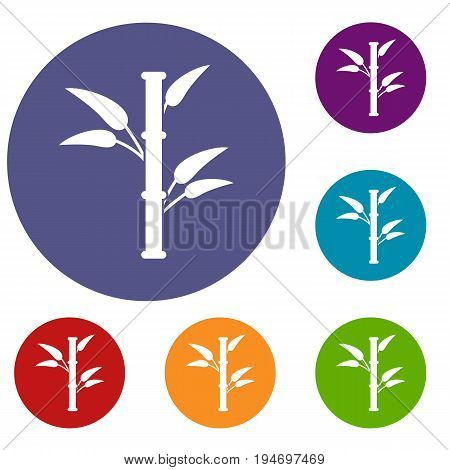 Bamboo icons set in flat circle reb, blue and green color for web