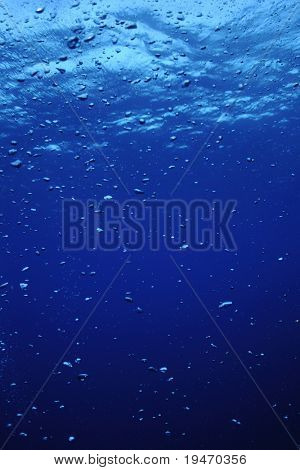 underwater scene with bubbles