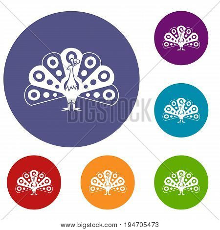 Peacock with flowing tail icons set in flat circle reb, blue and green color for web