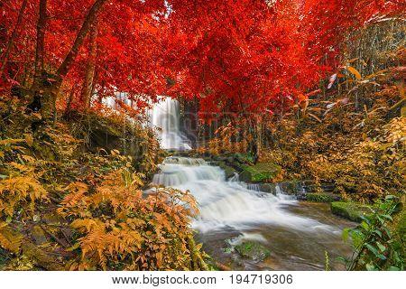 Beautiful Waterfall In Rainforest At Phu Tub Berk Mountain  Phetchabun, Thailand (mun Dang Waterfall
