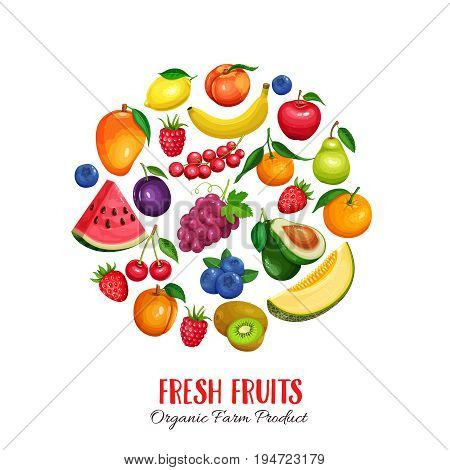 Raspberries, strawberries, grapes, currants and blueberries. Lemon, peach, apple, pear, orange watermelon avocado and melon Vector illustration berries and fruits round poster