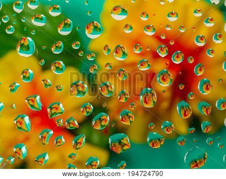 Water droplets creating a refraction of colors