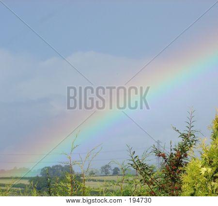 Rainbow3