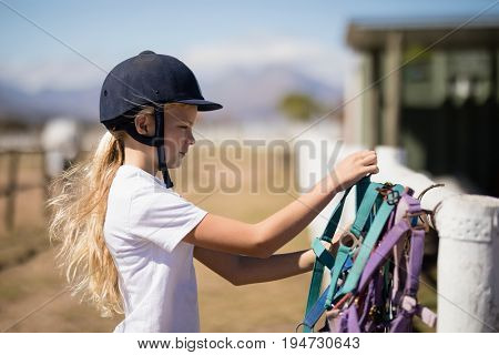 Girl picking up a horse muzzle in the ranch on a sunny day