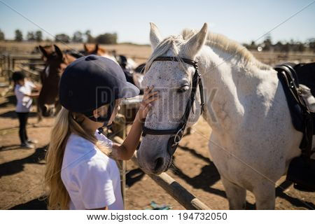 Girl caressing the white horse in the ranch on a sunny day