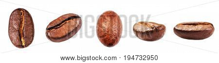 Various Coffee beans set Isolated on white background closeup macro