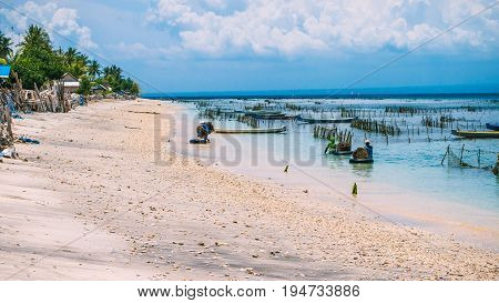Seaweed plantation farm by Low Tide in Nusa Penida, Bali in Clouds on Background. Indonesia