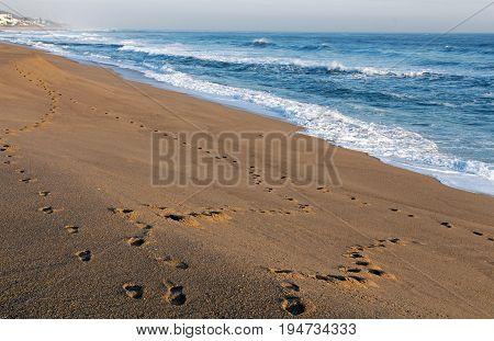 Footprint Trail On Empty Sandy Beach Seascape