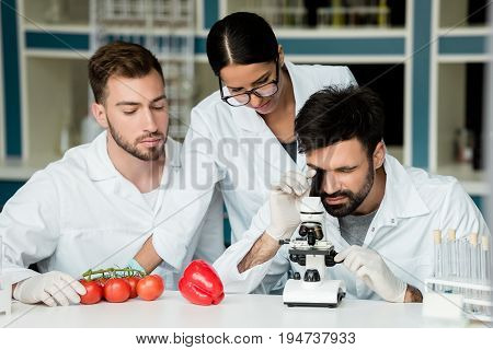Professional Young Scientists In White Coats Using Microscope While Examining Vegetables In Lab
