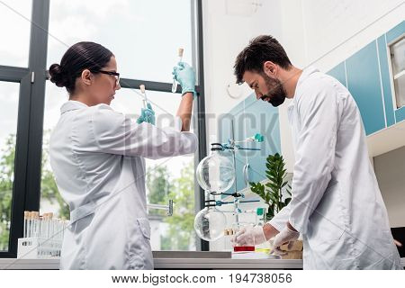 Professional Young Chemists In White Coats Working With Flasks And Test Tubes In Chemical Lab