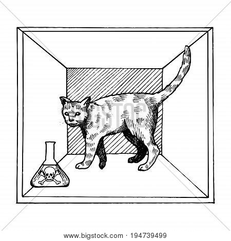 Shroedinger cat in box experiment with poison vector illustration. Interpretation of quantum mechanics. Scientific physical theory. Scratch board style imitation. Hand drawn image.