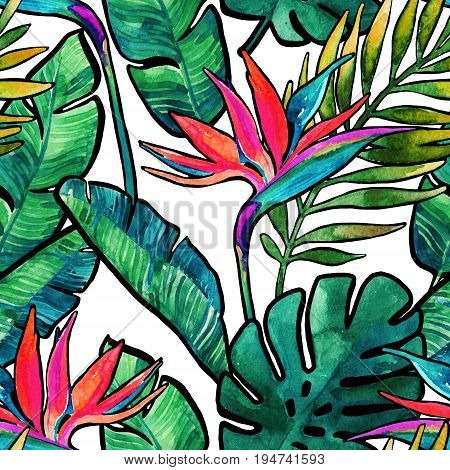 Watercolor tropical leaves and flowers with contour seamless pattern. Watercolour monstera palm leaves bird-of-paradise on white background. Hand painted illustration for summer design.