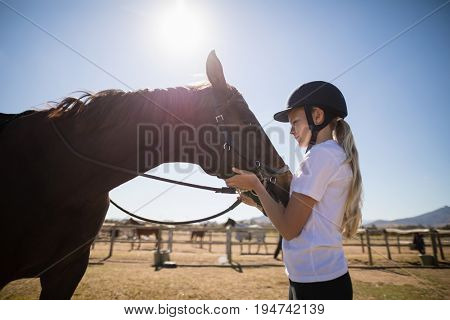 Rider girl caressing a horse in the ranch on a sunny day