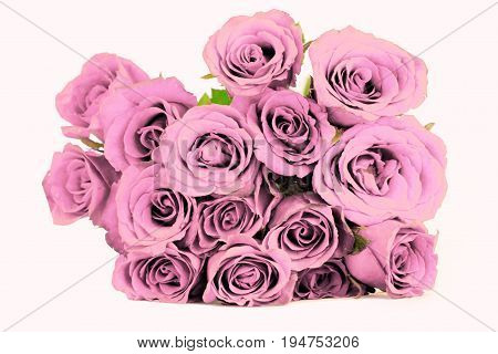 Fantasy pale purple roses bouquet on white background.