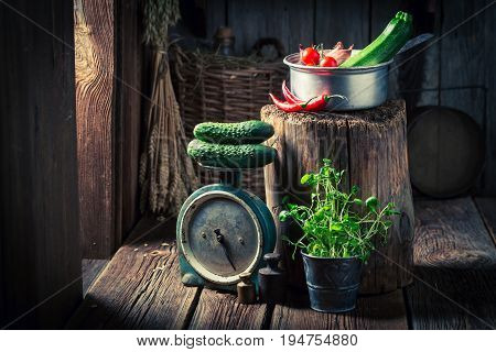 Wooden Basement With Fresh Herbs And Vegetables