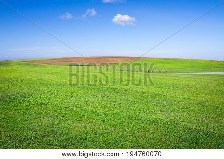 open grassland and sky.farm prairie field scenery scenic Outdoor landscape Power Vivid Love Fluffy Freedom Peace spiritual mystic Horizon