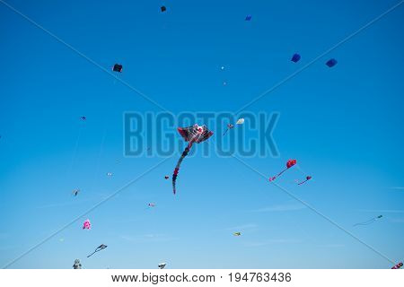 lots of colorful kites at a kite festival