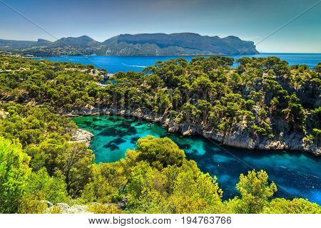 Amazing viewpoint on the cliffs Calanques de Port Pin bay Calanques National Park near Cassis fishing village Provence South France Europe